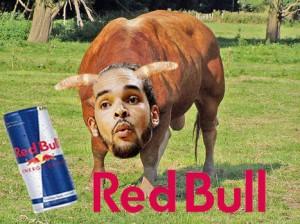 bullss[1]