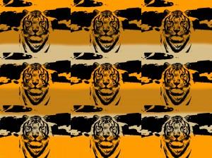 orange-tiger[1]